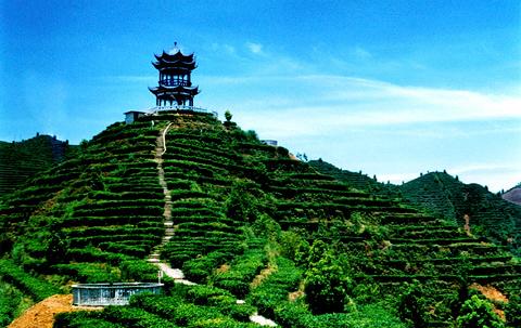 百色旅游景点 靖西县旅游景点大全  百色旅游景点 百色城凌云县