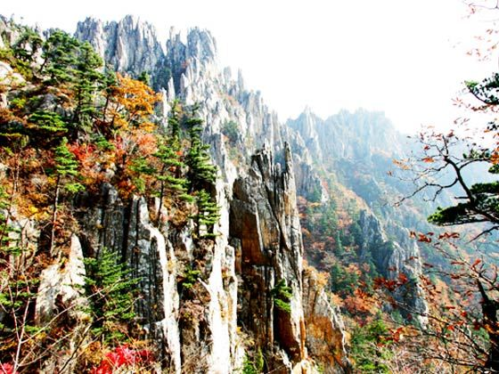 青岛秋季旅游景点大全
