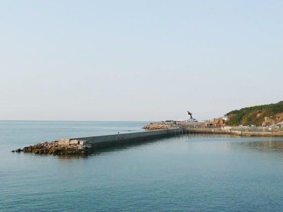 青岛一地海滨/温泉/崂山风光半自助往返高铁3日
